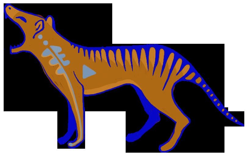 tiger_21 copy
